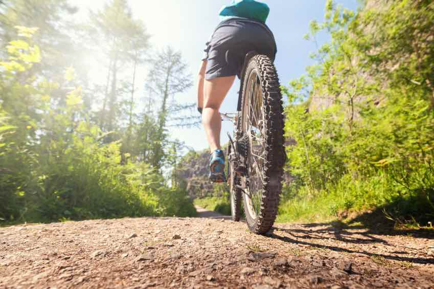 Vacances-vtt-grenoble.jpg (Mountain biker on a forest trail)