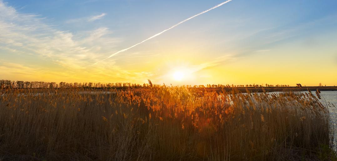À voir près de Hossegor: la réserve naturelle nationale du marais d'Orx