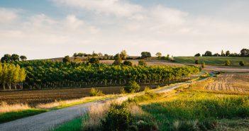 Ponts de mai : et si vous passiez un long week-end à la campagne ?